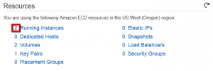 AWS EC2 Running Instances