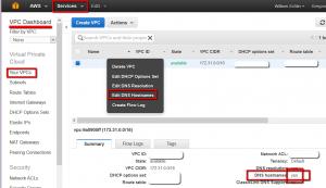 AWS EC2 Public DNS
